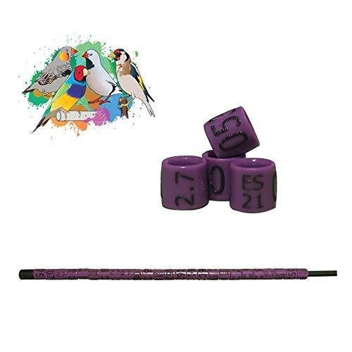 nestQ Anillas Canarios Españolitos Jilgueros Mayor Exoticos 2021 Color Violeta Federativo Policromo Grabado Laser Cerradas 2.7 mm Numeradas con Año Marcado 1 Tira 25 Anillas