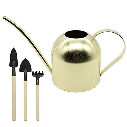 DIEYING Regadera de acero inoxidable de 33 oz/1 l, con 3 unidades de mini herramientas de jardín para plantas, plantas colgantes y jardines al aire libre (dorado)