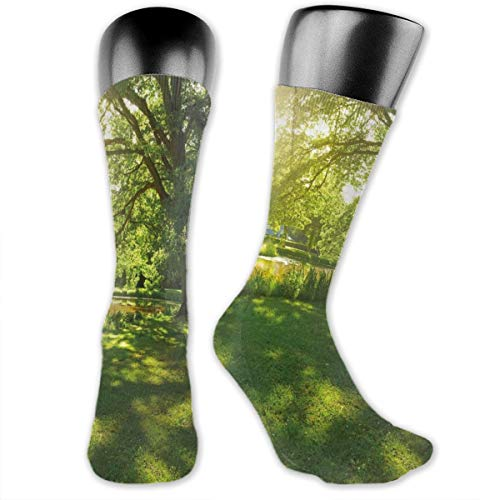 Papalikz Compression Medium Calf Socks,Summer Park In Hamburg Germany Trees Sunlight Forest Nature Theme Scenic Outdoors Picture
