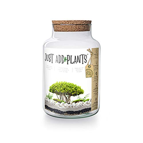 Jodeco Glass Just Add Plants Pflanzen Im Glas Terrarium Geschlossenes Ökosystem Mini Garten Flaschengartenset DIY Höhe: 30 cm Ø 19 cm