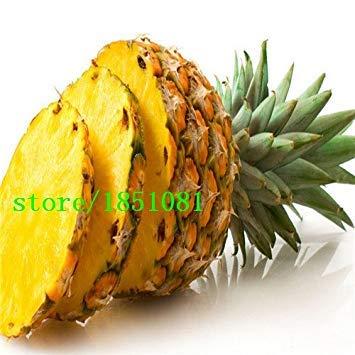 EXPÉDITION Nouveau Acier inoxydable Fruit 100 Pineapple Slicer Peeler Cutter Cuisine outil gratuit