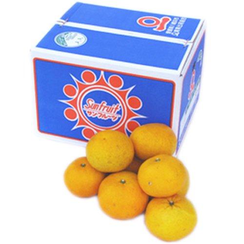 「ファミリーサンフルーツ10」愛媛サンフルーツ(新甘夏) ファミリー用10kg(10kg×1箱) 見た目綺麗のため贈答OK フルーツ 果物 通販