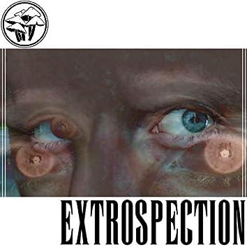 Extrospection