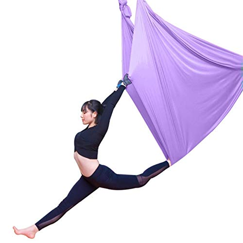 WCX Columpio Swing Hamaca De Yoga Antigravedad Aéreo Trapeze Hamaca Columpio Ultra Fuerte para Yoga Pilates Cuerpo Estirando Danza Aérea (Color : Light Purple, Size : 500x280cm/197x110in)