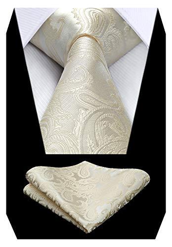 HISDERN Herren Krawatte Taschentuch Paisley Krawatte & Einstecktuch Set Blumen Jacquard Hochzeit Krawatten Einfarbig