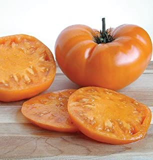 David's Garden Seeds Tomato Beefsteak Brandywine Yellow SL7146 (Orange) 50 Non-GMO, Organic, Heirloom Seeds