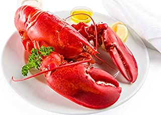 Maine Lobster Now: 2lb Live Maine Lobster (2 Pack)