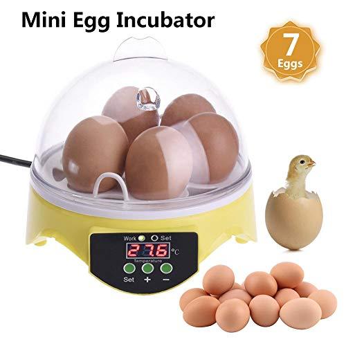 Goodde Vollautomatischer Digitaler Eier Inkubator 7 Eier Eierinkubato Eier Brutautomat Mit Temperaturregelung, Kleiner Geflügel Inkubator Brutapparat Brutkasten Für Hühner, Enten, Wachteln