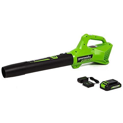 GreenWorks Commercial 24B315 24V 315 CFM...