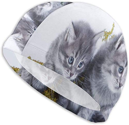 HFHY Siberian Kittens Swim Cap Mens Spandex Swimming Bathing Cap Hat Super-Sleek Design/Optimum Comfort/Skin-Friendly/for Short and Long Hair/Extra Durability