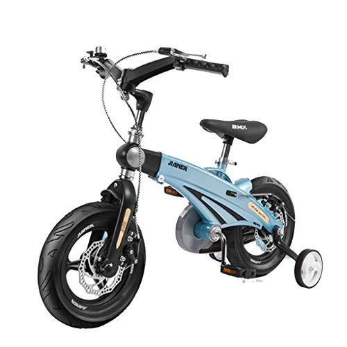 TD Kinderfahrrad Fahrrad Junge 12 Zoll 2-9 Jahre Alt Baby Fahrrad Männer Und Frauen Kind Fahrrad V0079 (Color : Holy Lake Blue)