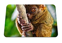 22cmx18cm マウスパッド (メガネザル霊長類属大きな目) パターンカスタムの マウスパッド
