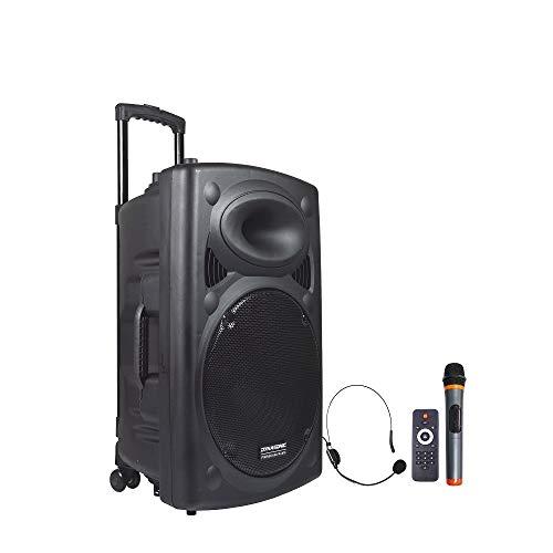 Oferta de DYNASONIC - Dynapro 15 - Altavoz Inalámbrico Sistema Audio Profesional Megafonia Portátil | Lector USB Bluetooth Radio FM y Micrófonos, Color Negro (DYNAPRO 15)