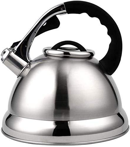 Bouilloire induction Théière en acier inoxydable 4.2L GRAND TAILLE GAZ INDUCTEURS Restaurants pour la maison Office Silver en plein air 29.5x23.5cm WHLONG