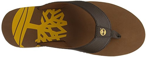 Timberland Wild Dunes, Herren Zehentrenner, Braun (Chocolate Brown With Arg An Oil 243), 40 EU