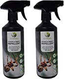 EcoWidow 2x 500ml Natural Strong Insect & Spider Repellent Spray - for Home, Indoors & Outdoors - Peppermint Oil Alternative to Spider Killer Spray, Spider Trap & Spider Catcher