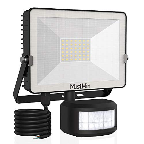 MustWin -   30W LED Strahler