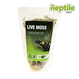 PETBLIS Prorep Live Moss Small Bag, 1.5 Litre