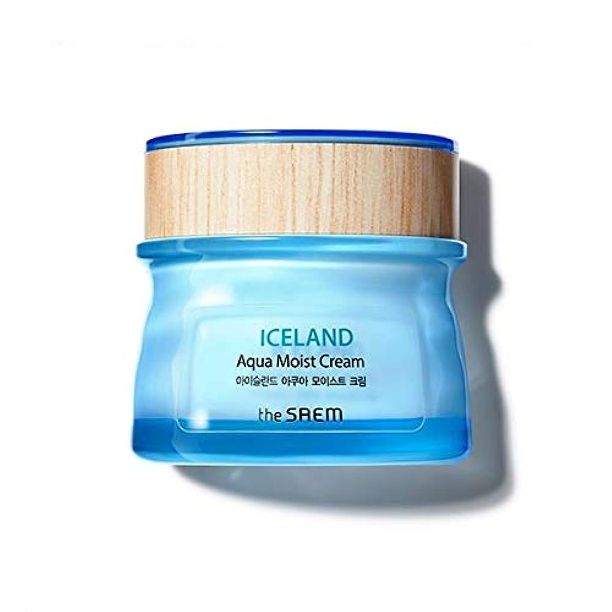 恥ずかしさ保険をかけるラベルThe saem Iceland Apua Moist Cream ザセム アイスランド アクア モイスト クリーム 60ml [並行輸入品]