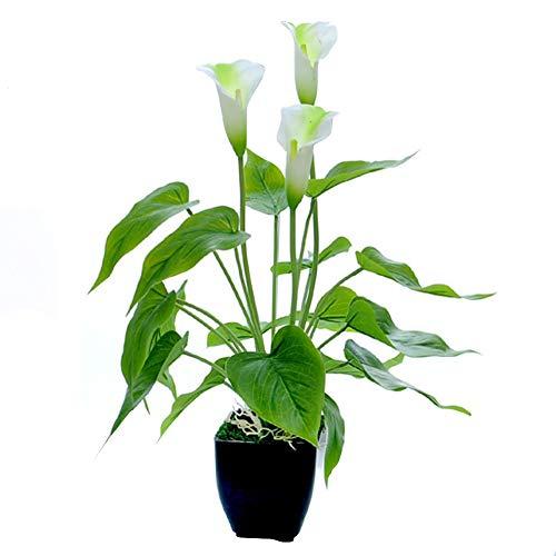 LANGM Künstliche Pflanze, Calla Lily Künstliche Anthurium Pflanze Im Topf, Kunstpflanze Dekopflanze Kunstblume Deko Zimmerpflanze Blumen (B)