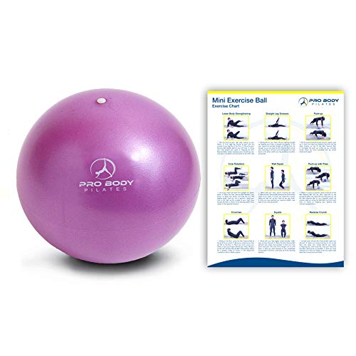 ProBody Pilates Ball Workout Ball - 9 Inch Mini Physical Therapy Ball for Stability, Barre, Yoga, Bender, Balance, Core Training, Recovery Small Exercise Ball for Between Knees (Purple)