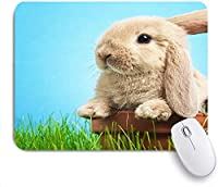 Mabby ゲームオフィスのマウスパッド,Baby rabbit in grass,Non-Slip Rubber Base Mousepad for Laptop Computer PC Office,Cute Design Desk Accessories
