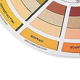 Ruota dei colori per tatuaggi Ruota dei colori per artisti Ruota dei colori per artigiani Pittori di giardini per interni