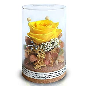 Preserved Roses, Gift for Mom Mum, Red Rose, Handmade Preserved Roses Present, Upscale Immortal Flowers Gift for Female Birthday, Anniversary, Christmas (Yellow)