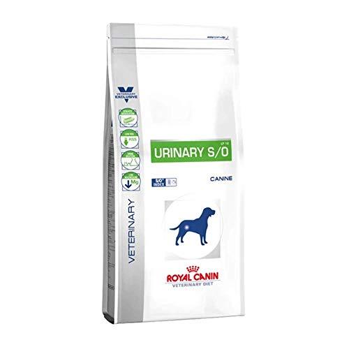 Royal Canin C-11155 Comida para perros Diet Urinary S/O, 2 Kg