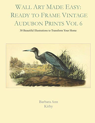 Wall Art Made Easy: Ready to Frame Vintage Audubon Prints Vol 6: 30 Beautiful Illustrations to Transform Your Home
