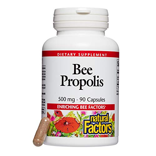Natural Factors, Bee Propolis Extract 500 mg, Supports a Healthy Immune System, 90 capsules (90 servings)
