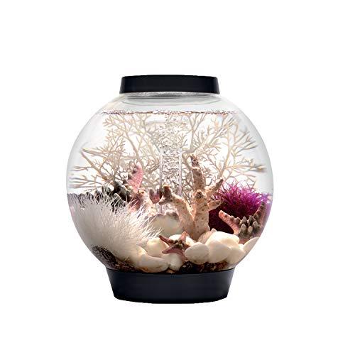 biOrb Mini-Aquarium, 15Liter, 30x 32cm, LED-Beleuchtung, Schwarz