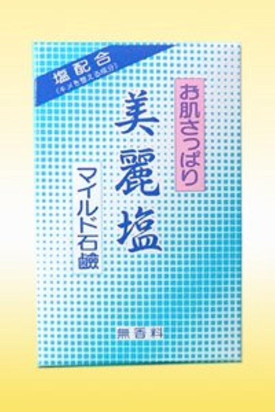 不透明ないくつかの風が強いニード美麗塩マイルド石鹸(95g)キメを整える成分:塩配合の無香料石鹸