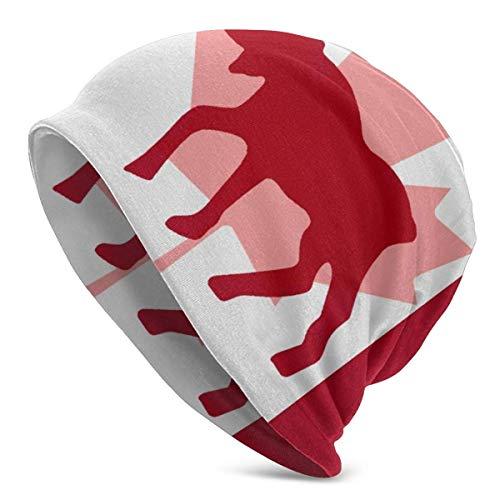 JJsister Wintermütze,Strickmütze,Beanie Mütze Canada Moose in Flag Beanie Hat Hipster Skull Cap Stretch Casual Headwear