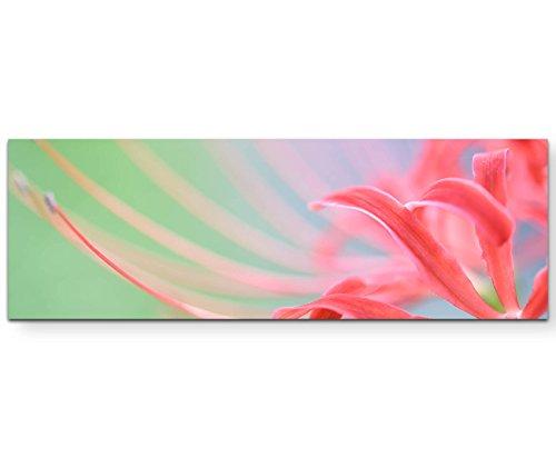 Eau Zone Wandbild auf Leinwand 150x50cm Rote Spinnenlilie