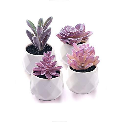 CADNLY Fake Succulent Plant Set - Artificial Succulent...