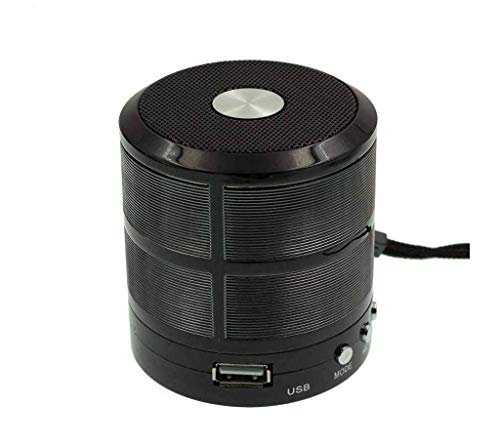 Mini Bluetooth Speaker WS 887 with FM Radio, Memory Card Slot, USB Pen Drive Slot, AUX Input Mode (Black)