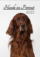 Hunde im Portrait (Wandkalender 2022 DIN A2 hoch): Jeden Monat ein neues schoenes Hundegesicht zum Verlieben. (Monatskalender, 14 Seiten )