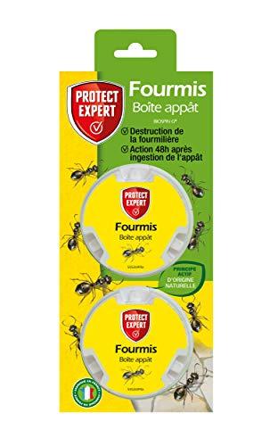 PROTECT EXPERT BOITNAT2 Fourmis-Gel Appâts Boîtes 2x10g, Efficace