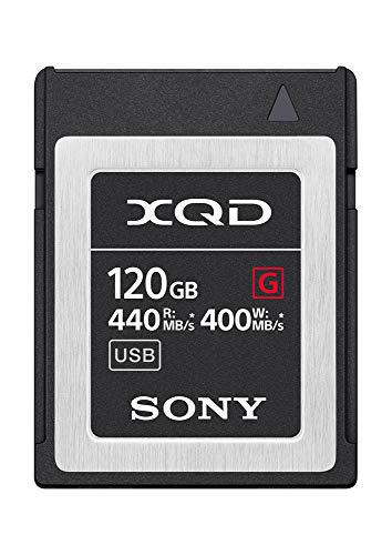 Sony QDG120F Flash-Speicherkarte (120 GB)