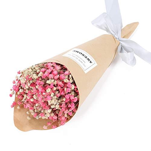 XHXSTORE Naturel Bouquet De Fleurs Séchées Gypsophile Bouquet De Fleurs Séchées Arrangement De Fleurs Décoration De La Maison Paquet Cadeaux pour DIY Mariage Garden Party 35cm