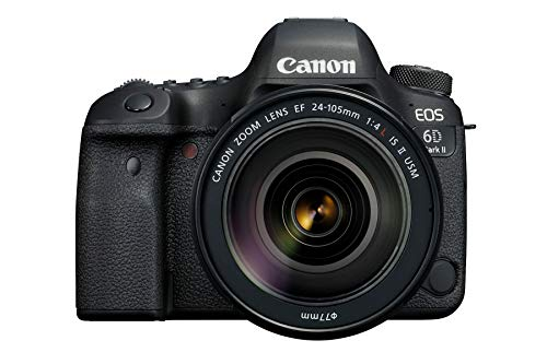 Canon EOS 6D Mark II + 24-105mm f/4L IS II USM Schwarz