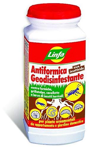 Antiformica geodisinfestante insetticida Linfa