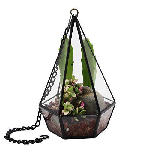 Hanging glass terrarium with chain