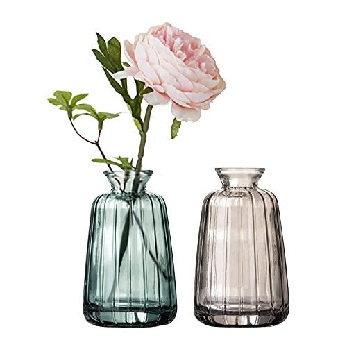 Juego de 2 jarrones pequeños de cristal para decoración de mesa