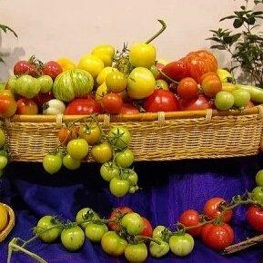 Graines de vente Hot 300PCS Tomate (MIX) Livraison Violet Noir Rouge Jaune Vert Cerise Pêche Poire Tomate Non-GMO aliments biologiques gratuit