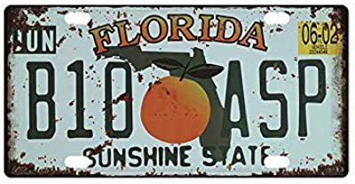 FemiaD - Placa de Metal para Pared con Texto en inglés Florida ...