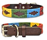 Paxleys <span class='highlight'>Handmade</span> Brown <span class='highlight'>Leather</span> POLO <span class='highlight'>Dog</span> Collar, Metal Roller Buckle, Suitable For Puppy <span class='highlight'>Dog</span>s, Argentina Style Easy Adjustable Waterproof <span class='highlight'>UK</span> Designer, Multicoloured Rainbow (Extra Small - 20cm-30cm)