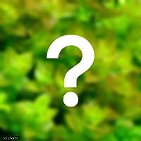 (水草)おまかせバコパ(水上葉) 2種×5本セット(無農薬)(計10本)