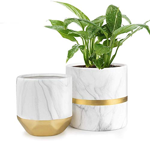 Homenote Ceramic Faux Marble Planter Set